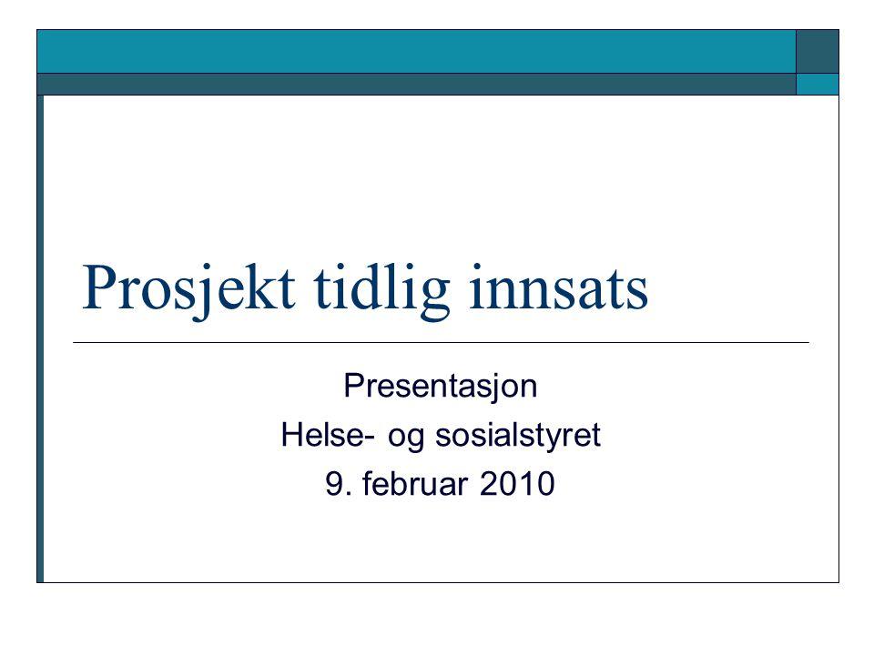 Styringsgruppe  Helse- og sosialdirektør Lars Dahlen  Skoledirektør Marie Føreland  Barnehagedirektør Nina Reinhart