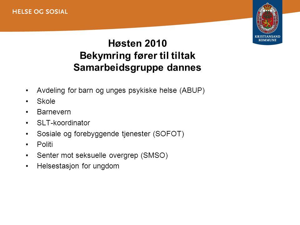 Høsten 2010 Bekymring fører til tiltak Samarbeidsgruppe dannes Avdeling for barn og unges psykiske helse (ABUP) Skole Barnevern SLT-koordinator Sosiale og forebyggende tjenester (SOFOT) Politi Senter mot seksuelle overgrep (SMSO) Helsestasjon for ungdom