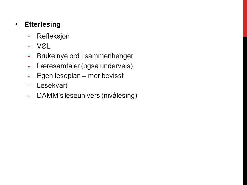 Etterlesing -Refleksjon -VØL -Bruke nye ord i sammenhenger -Læresamtaler (også underveis) -Egen leseplan – mer bevisst -Lesekvart -DAMM's leseunivers