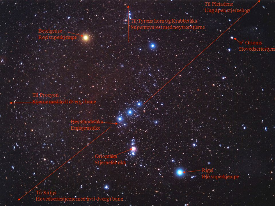 Stjerneutvikling 48 Hestehodetåka Emisjonståke Oriontåka Stjernefabrikk Betelgeuse Rød superkjempe Til Pleiadene Ung åpen stjernehop Til Sirius Hovedseriestjerne med hvit dverg i bane Rigel Blå superkjempe Til Procyon Stjerne med hvit dverg i bane Til Tyrens horn og Krabbetåka Supernovarest med nøytronstjerne  3 Orionis Hovedseriestjerne