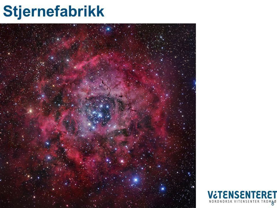 Stjerneutvikling 49 Skumrings- trekanten Cygnus X1 Sort hull som spiser en stjerne Ringtåka Planetarisk tåke