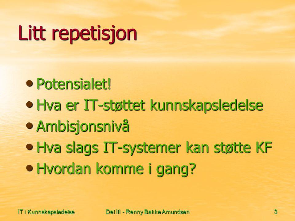 IT i KunnskapsledelseDel III - Renny Bakke Amundsen4 IT-støtte - et potensiale.