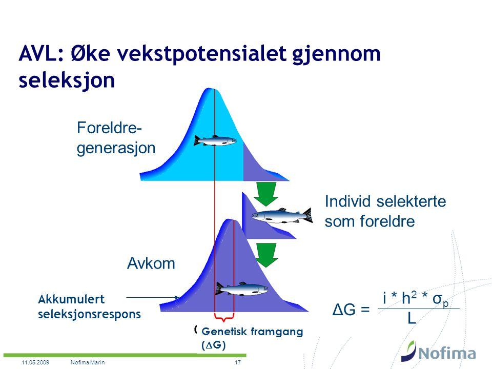 11.05.2009Nofima Marin17 Akkumulert seleksjonsrespons Genetisk framgang (  G) AVL: Øke vekstpotensialet gjennom seleksjon i * h 2 * σ p L ΔG = Foreldre- generasjon Avkom Individ selekterte som foreldre