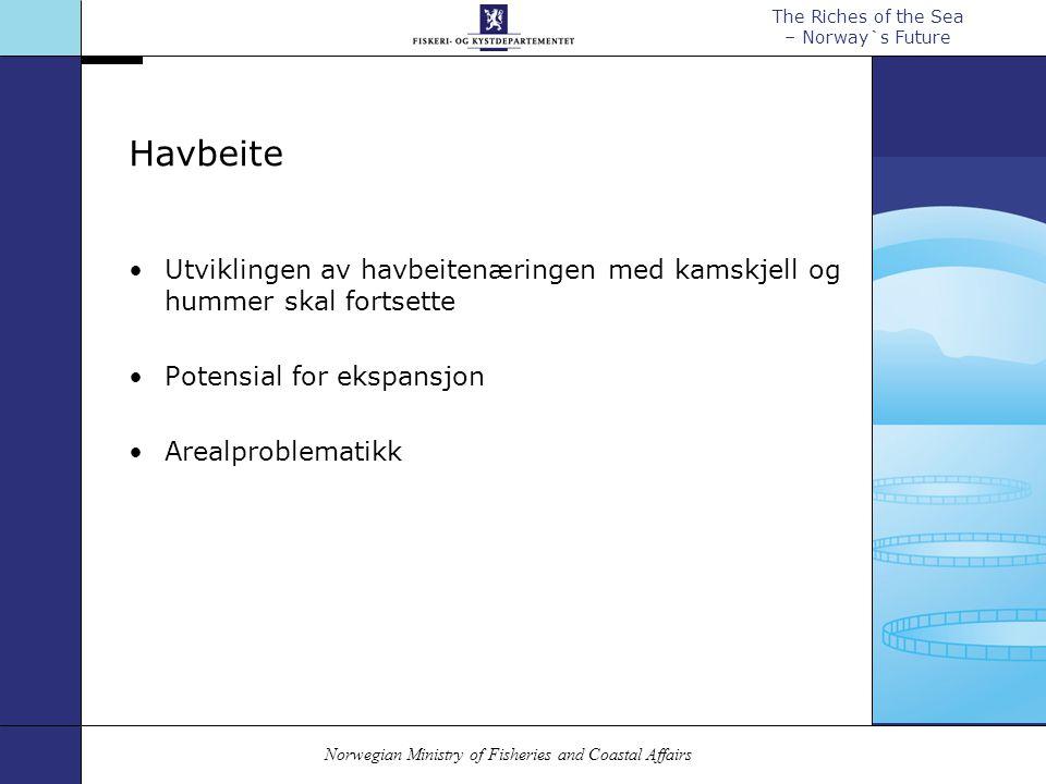 Norwegian Ministry of Fisheries and Coastal Affairs The Riches of the Sea – Norway`s Future Havbeite Utviklingen av havbeitenæringen med kamskjell og hummer skal fortsette Potensial for ekspansjon Arealproblematikk