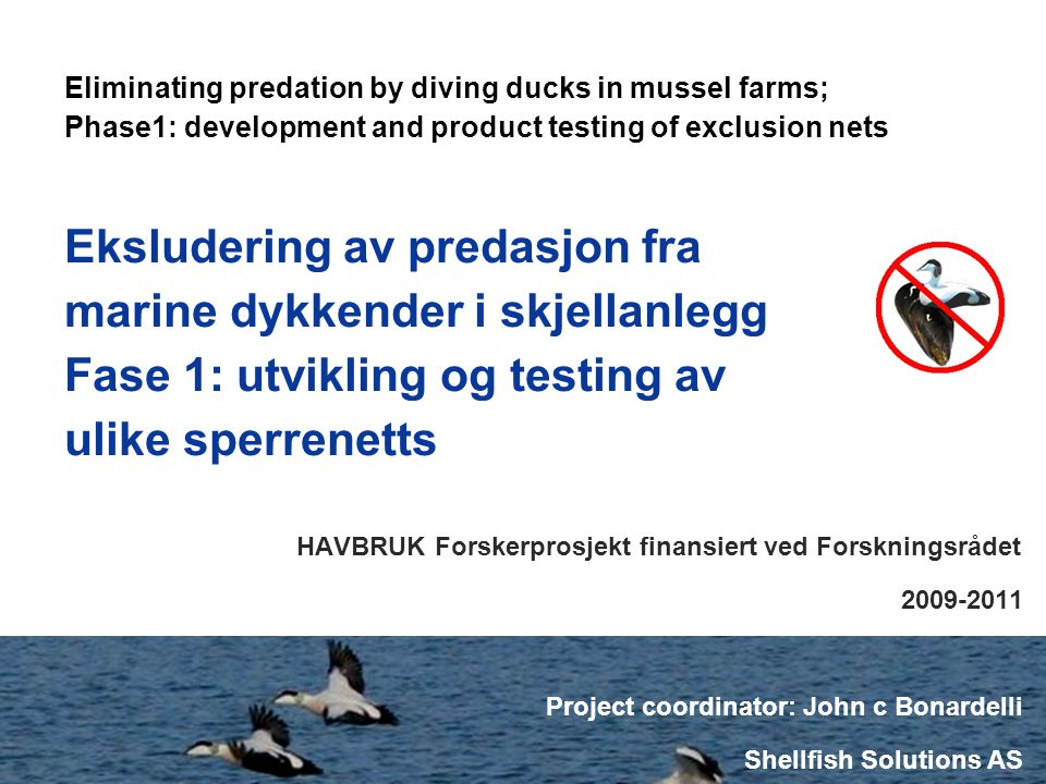 Eliminating predation by diving ducks in mussel farms; Phase1: development and product testing of exclusion nets HAVBRUK Forskerprosjekt finansiert ve