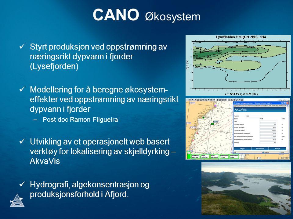 CANO Økosystem Styrt produksjon ved oppstrømning av næringsrikt dypvann i fjorder (Lysefjorden) Modellering for å beregne økosystem- effekter ved opps
