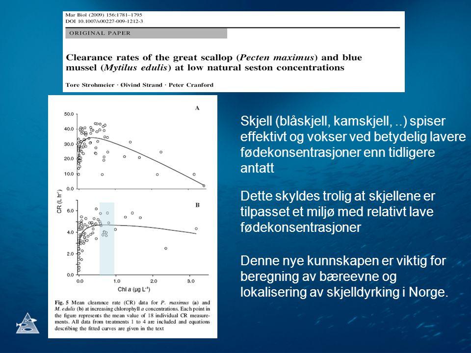 Skjell (blåskjell, kamskjell,..) spiser effektivt og vokser ved betydelig lavere fødekonsentrasjoner enn tidligere antatt Denne nye kunnskapen er vikt