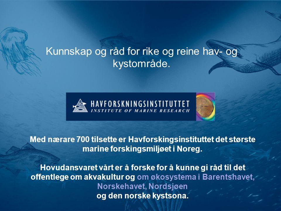 Kunnskap og råd for rike og reine hav- og kystområde. Med nærare 700 tilsette er Havforskingsinstituttet det største marine forskingsmiljøet i Noreg.