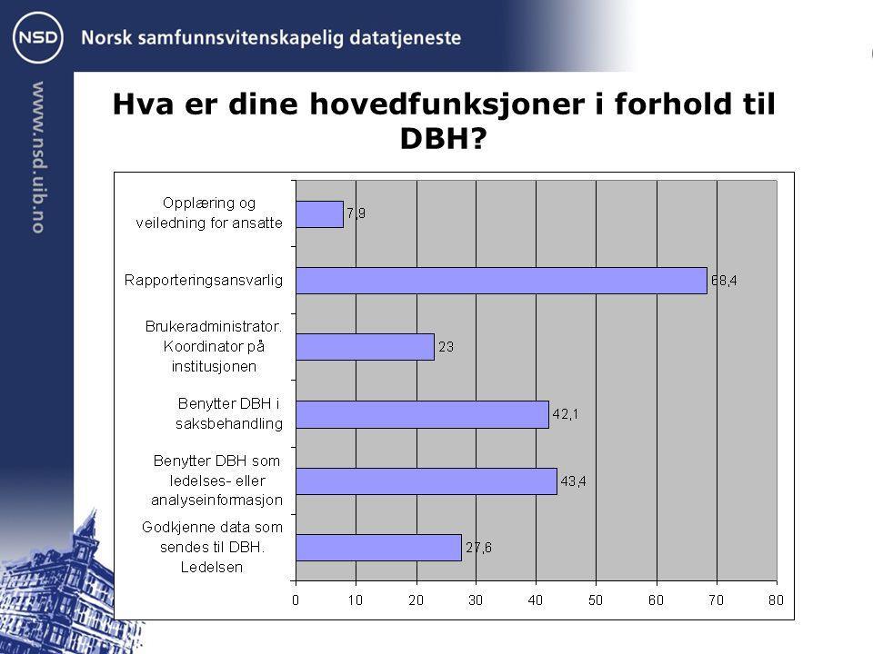 Hva er dine hovedfunksjoner i forhold til DBH?
