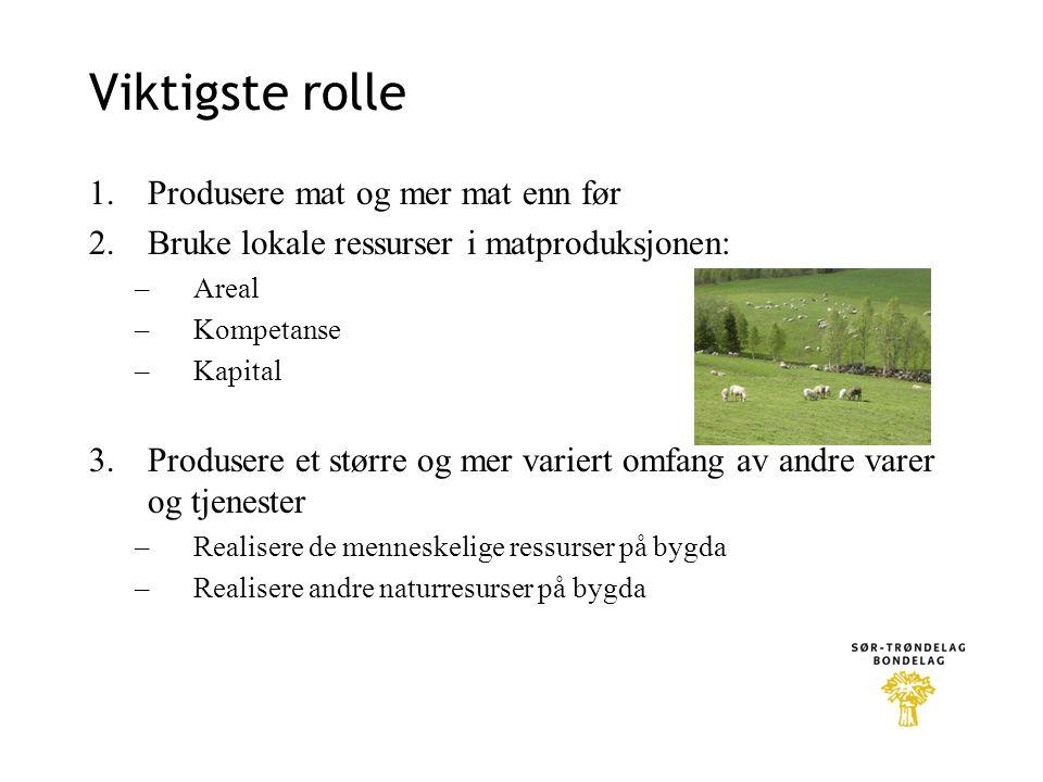 Viktigste rolle 1.Produsere mat og mer mat enn før 2.Bruke lokale ressurser i matproduksjonen: –Areal –Kompetanse –Kapital 3.Produsere et større og me