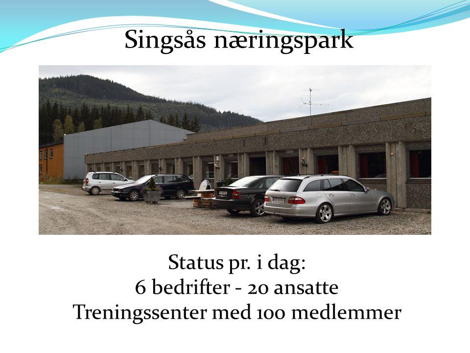 Singsås næringspark Status pr. i dag: 6 bedrifter - 20 ansatte Treningssenter med 100 medlemmer