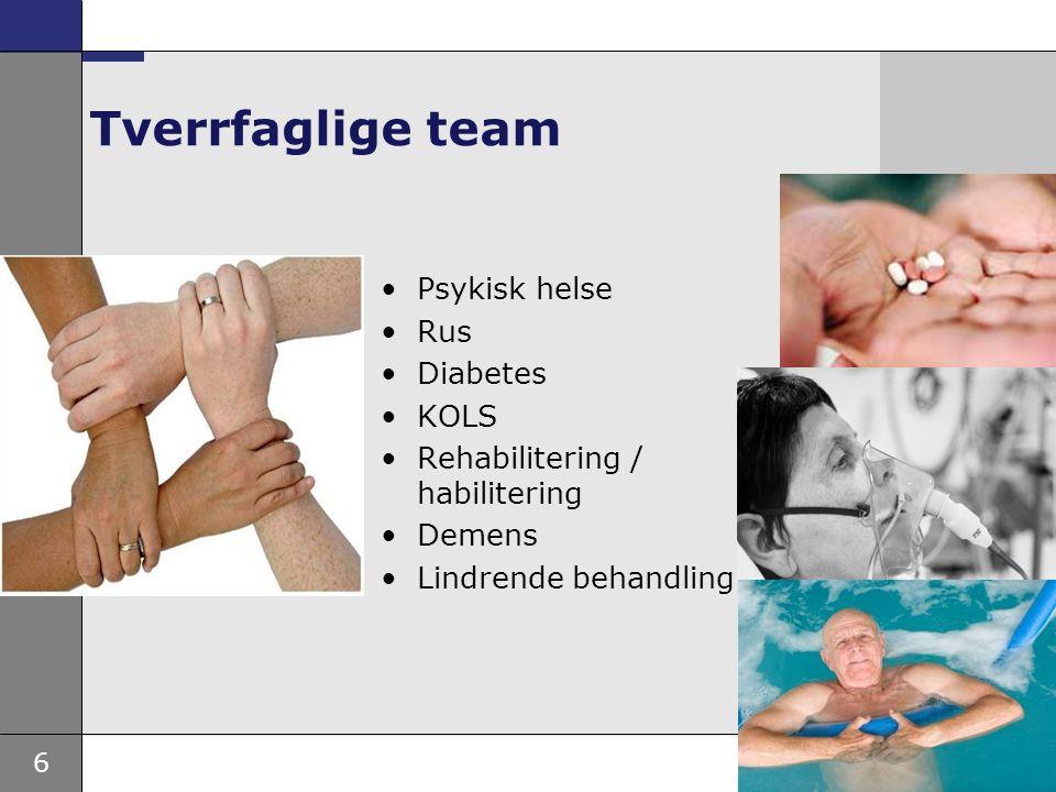 6 Tverrfaglige team Psykisk helse Rus Diabetes KOLS Rehabilitering / habilitering Demens Lindrende behandling