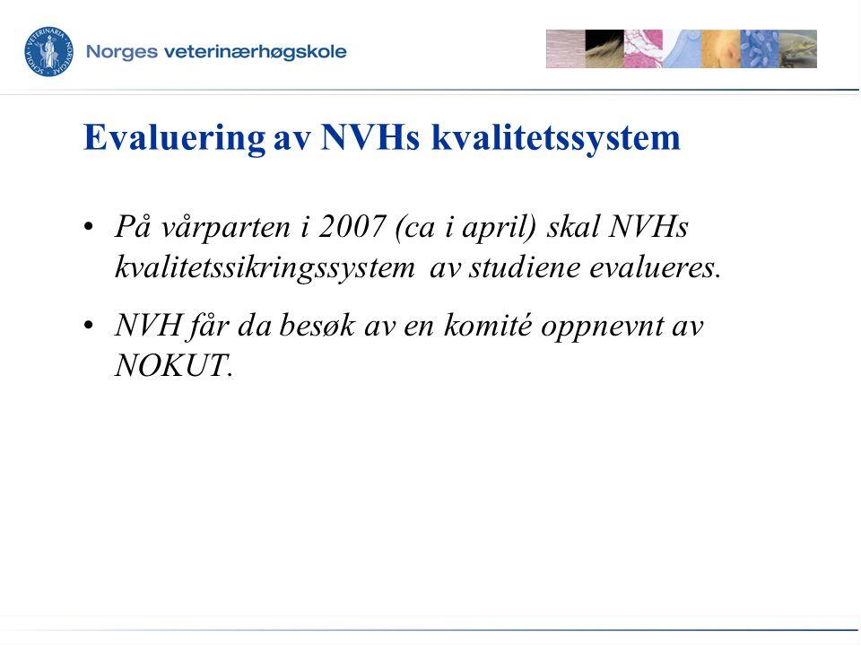 Evaluering av NVHs kvalitetssystem På vårparten i 2007 (ca i april) skal NVHs kvalitetssikringssystem av studiene evalueres. NVH får da besøk av en ko