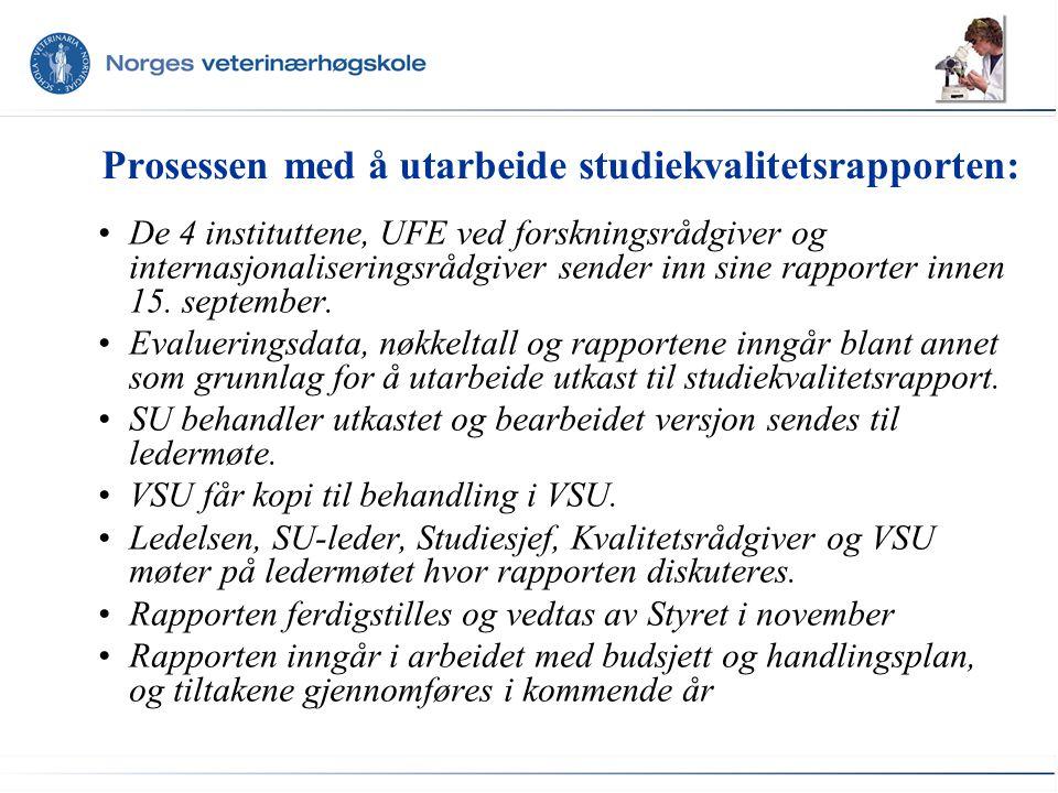 Prosessen med å utarbeide studiekvalitetsrapporten: De 4 instituttene, UFE ved forskningsrådgiver og internasjonaliseringsrådgiver sender inn sine rapporter innen 15.
