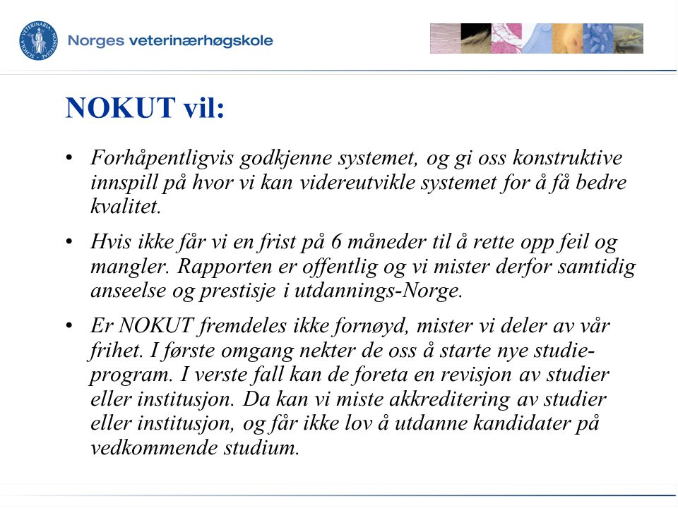NOKUT vil: Forhåpentligvis godkjenne systemet, og gi oss konstruktive innspill på hvor vi kan videreutvikle systemet for å få bedre kvalitet. Hvis ikk