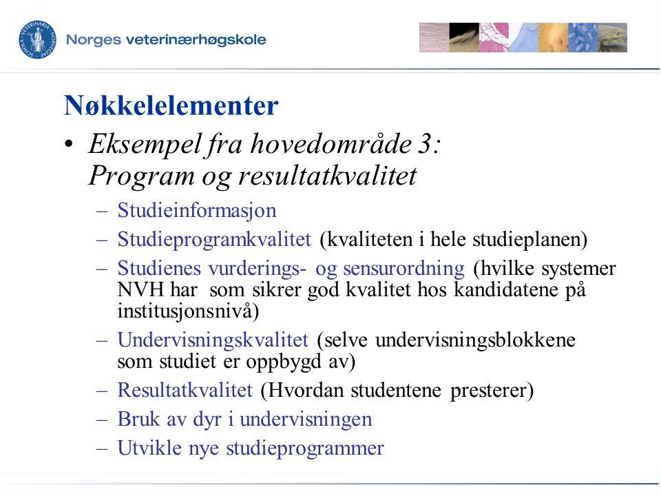 Nøkkelelementer Eksempel fra hovedområde 3: Program og resultatkvalitet –Studieinformasjon –Studieprogramkvalitet (kvaliteten i hele studieplanen) –St