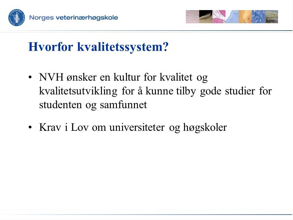 Studiekvaliteten ved NVH Dvs. gjennom prosesser som foregår her: