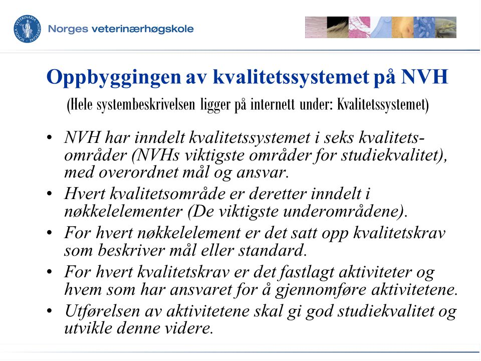 Oppbyggingen av kvalitetssystemet på NVH NVH har inndelt kvalitetssystemet i seks kvalitets- områder (NVHs viktigste områder for studiekvalitet), med