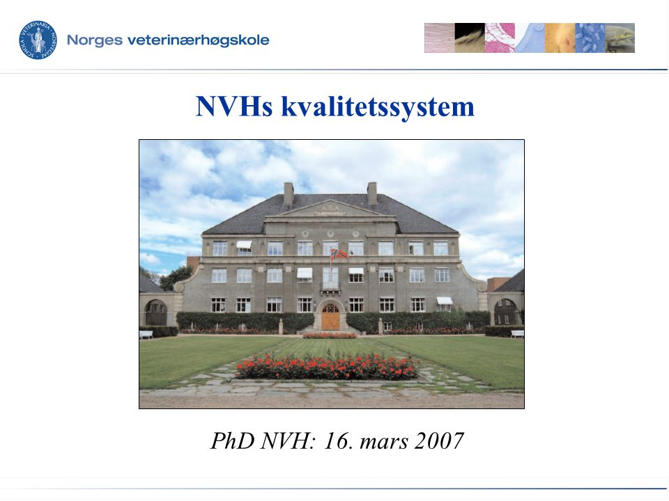 NVHs kvalitetssystem PhD NVH: 16. mars 2007