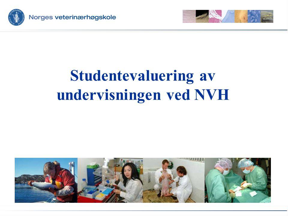 Studentevaluering av undervisningen ved NVH