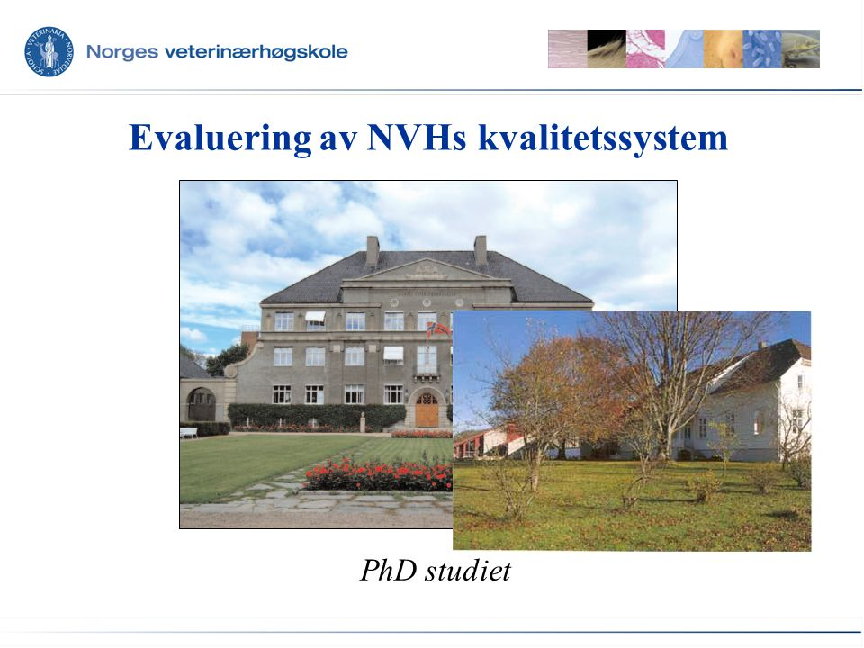 Evaluering av NVHs kvalitetssystem PhD studiet