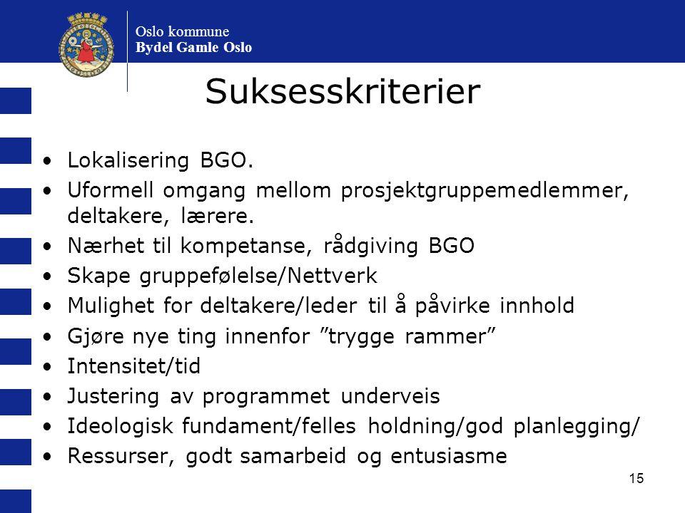 15 Suksesskriterier Lokalisering BGO. Uformell omgang mellom prosjektgruppemedlemmer, deltakere, lærere. Nærhet til kompetanse, rådgiving BGO Skape gr