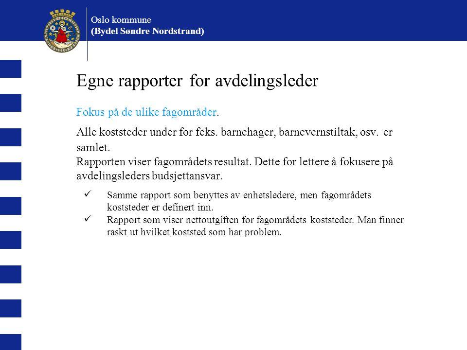 Oslo kommune (Bydel Søndre Nordstrand) Egne rapporter for avdelingsleder Fokus på de ulike fagområder.