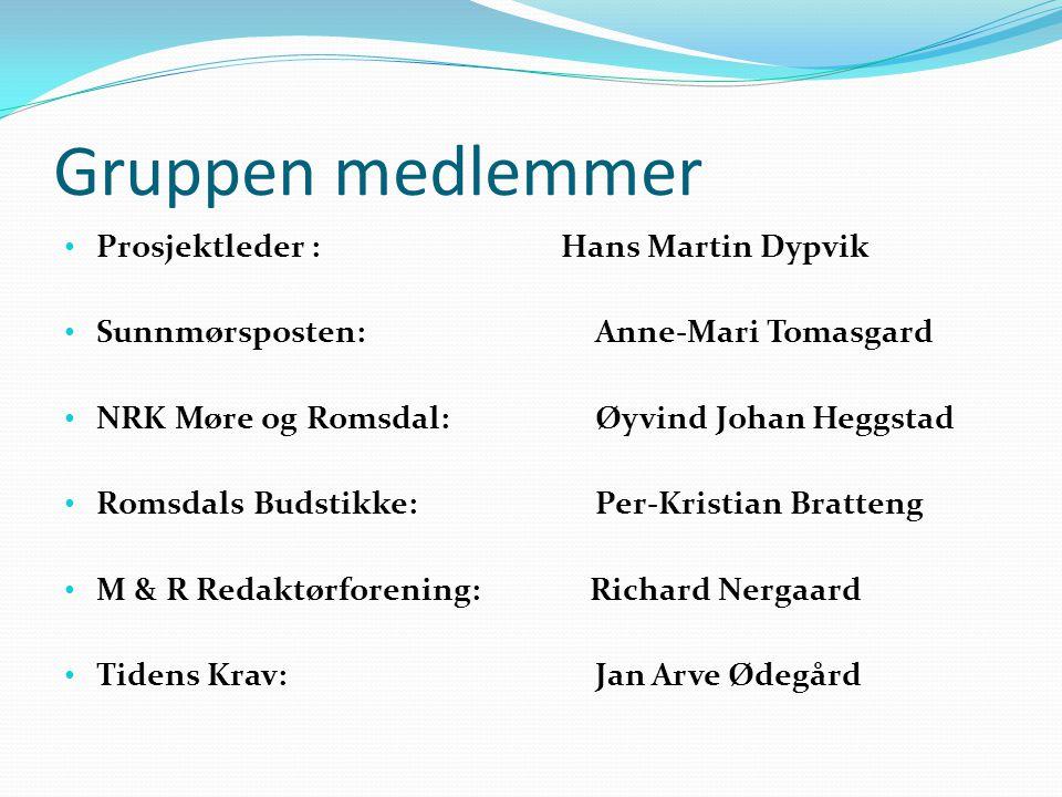 FORVENTNINGER/OPPGAVER: At vi kartlegger hva som finnes av interessante virksomheter/selskaper i Møre og Romsdal som er eid eller dominert av det offentlige.