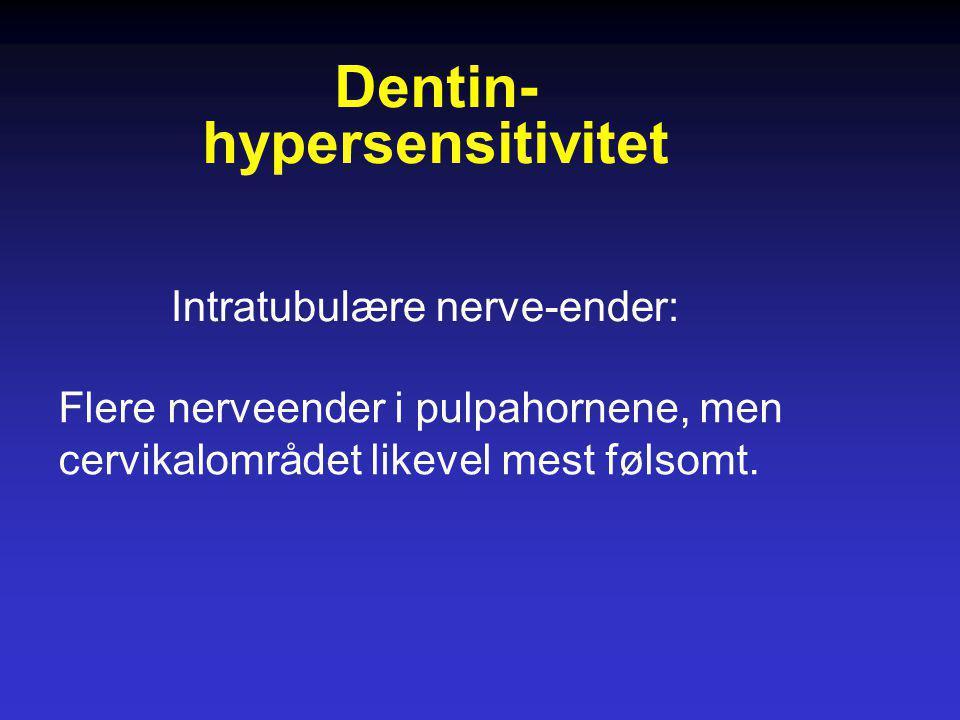 Intratubulære nerve-ender: Flere nerveender i pulpahornene, men cervikalområdet likevel mest følsomt. Dentin- hypersensitivitet