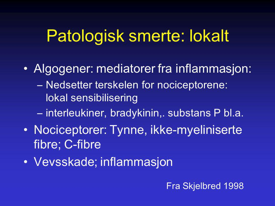 Patologisk smerte: lokalt Algogener: mediatorer fra inflammasjon: –Nedsetter terskelen for nociceptorene: lokal sensibilisering –interleukiner, bradyk