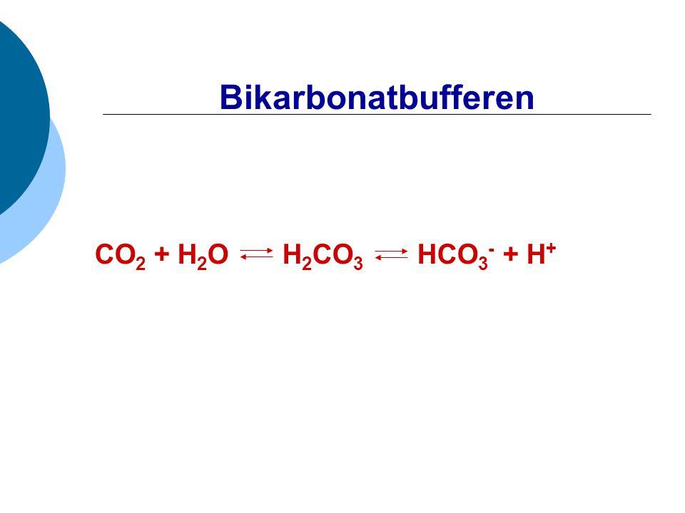 Bikarbonatbufferen CO 2 + H 2 O H 2 CO 3 HCO 3 - + H +
