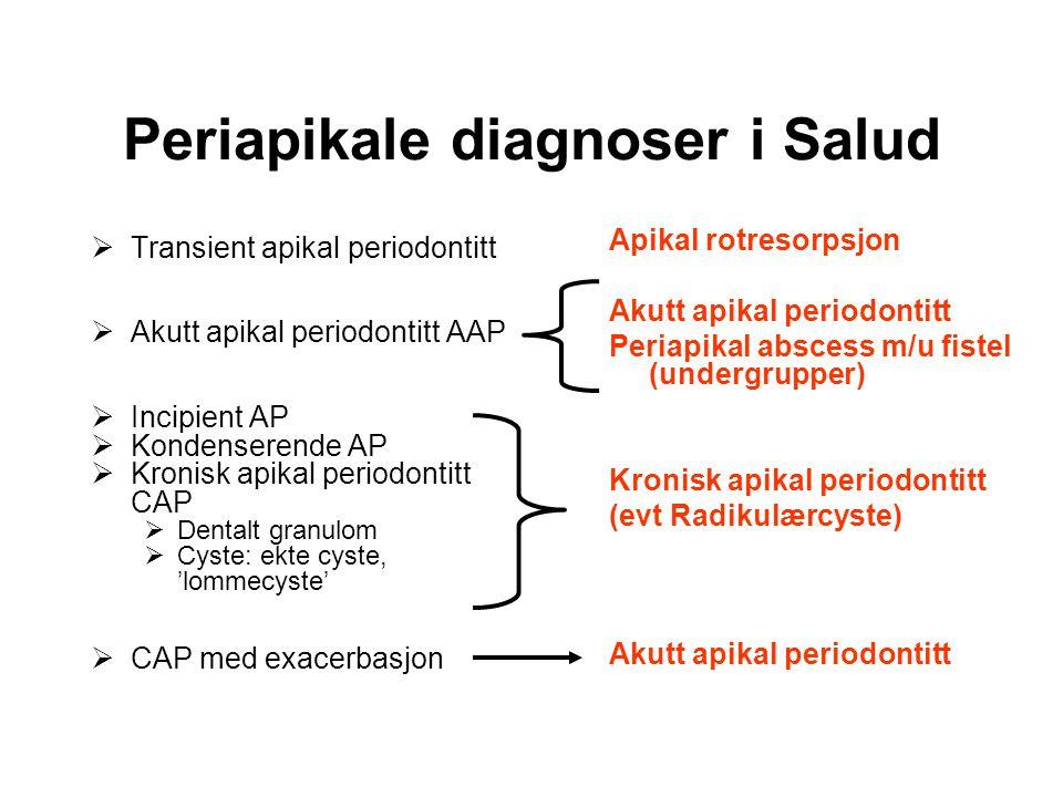 Periapikale diagnoser i Salud  Transient apikal periodontitt  Akutt apikal periodontitt AAP  Incipient AP  Kondenserende AP  Kronisk apikal periodontitt CAP  Dentalt granulom  Cyste: ekte cyste, 'lommecyste'  CAP med exacerbasjon Apikal rotresorpsjon Akutt apikal periodontitt Periapikal abscess m/u fistel (undergrupper) Kronisk apikal periodontitt (evt Radikulærcyste) Akutt apikal periodontitt
