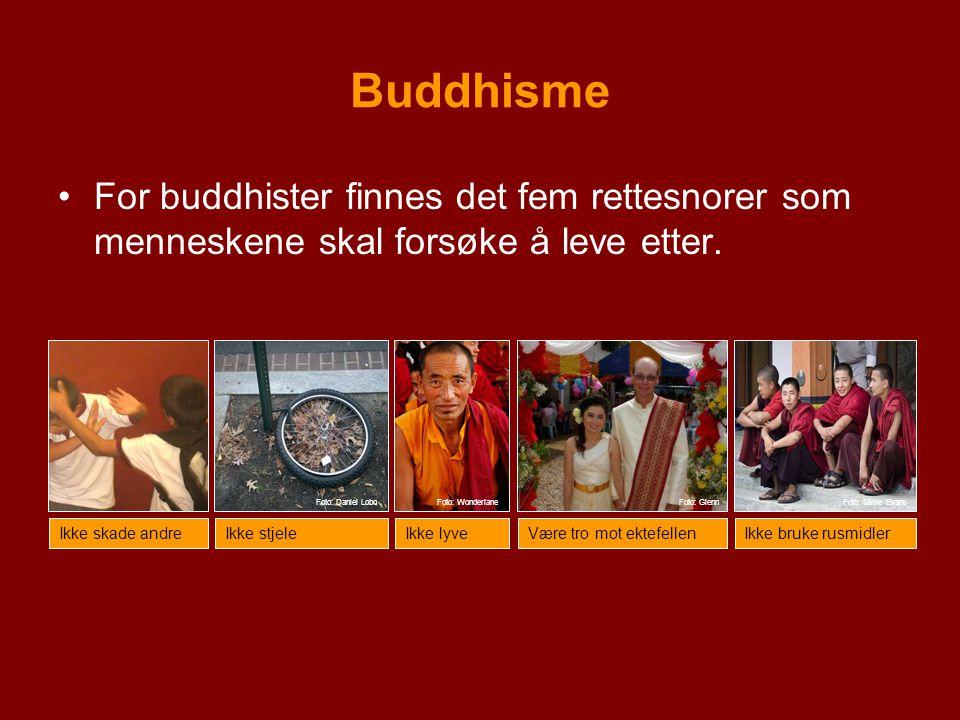 Buddhisme For buddhister finnes det fem rettesnorer som menneskene skal forsøke å leve etter. Ikke skade andreIkke stjeleIkke lyveVære tro mot ektefel