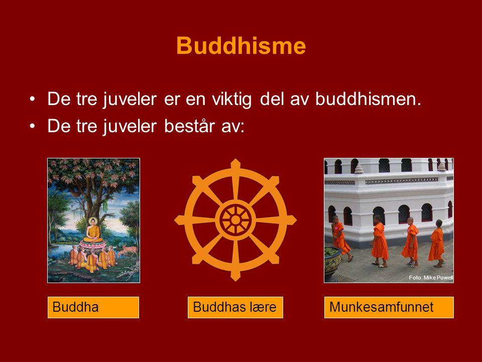 Buddhisme De tre juveler er en viktig del av buddhismen. De tre juveler består av: BuddhaBuddhas læreMunkesamfunnet Foto: Mike Powell