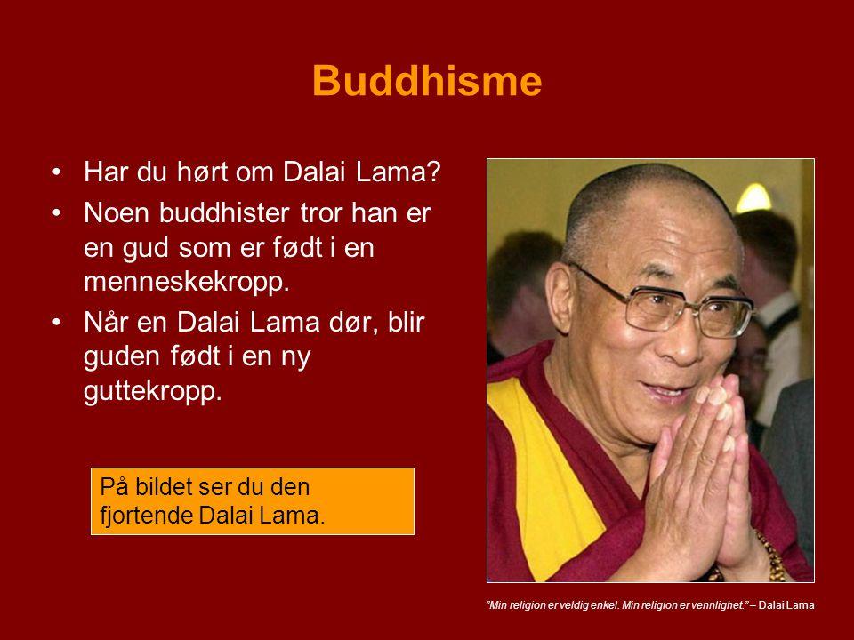 Buddhisme Har du hørt om Dalai Lama? Noen buddhister tror han er en gud som er født i en menneskekropp. Når en Dalai Lama dør, blir guden født i en ny