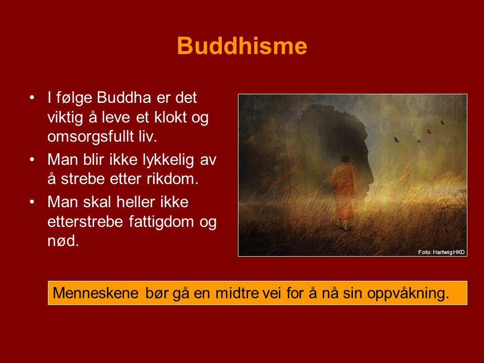 Buddhisme Bilde:Lenke:Rettigheter: Buddha-hodehttp://www.flickr.com/photos/rene_ehrhardt/2391226598/http://creativecommons.org/licenses/by/2.0/deed.en Karthttp://upload.wikimedia.org/wikipedia/commons/c/c3/BlankMap-World.pnghttp://en.wikipedia.org/wiki/public_domain Buddhahttp://commons.wikimedia.org/wiki/File:Buddha_meditating.jpghttp://en.wikipedia.org/wiki/public_domain Midtre veihttp://www.flickr.com/photos/h-k-d/2968056082/http://creativecommons.org/licenses/by-nd/2.0/deed.en Gjenfødelsehttp://www.flickr.com/photos/h-k-d/2984807729/in/set-72157603793476786/http://creativecommons.org/licenses/by-nd/2.0/deed.en Ikke voldhttp://commons.wikimedia.org/wiki/File:Bullying_Irfe.jpghttp://en.wikipedia.org/wiki/GNU_Free_Documentation_License Ikke stjelehttp://www.flickr.com/photos/daquellamanera/312548519/http://creativecommons.org/licenses/by-sa/2.0/deed.en Ikke lyvehttp://farm4.static.flickr.com/3294/3041768783_b6a4507f0b.jpg?v=0http://creativecommons.org/licenses/by/2.0/deed.en Bodhisattvahttp://commons.wikimedia.org/wiki/File:Wood_Bodhisattva_2.jpghttp://en.wikipedia.org/wiki/GNU_Free_Documentation_License Dalai Lamahttp://commons.wikimedia.org/wiki/File:Tenzin_Gyatzo_foto_1.jpghttp://en.wikipedia.org/wiki/public_domain Mediteringhttp://www.flickr.com/photos/h-k-d/3322872251/in/set-72157603793476786/http://creativecommons.org/licenses/by-nd/2.0/deed.en Ikke rushttp://www.flickr.com/photos/babasteve/2755849955/http://creativecommons.org/licenses/by/2.0/deed.en Troskaphttp://www.flickr.com/photos/glennsthailand/2557811202/http://creativecommons.org/licenses/by-nd/2.0/deed.en Åttedelt veihttp://en.wikipedia.org/wiki/File:Dharma_Wheel.svghttp://en.wikipedia.org/wiki/GNU_Free_Documentation_License Fire sannheterhttp://www.flickr.com/photos/tylerdurden/361274809/sizes/l/http://creativecommons.org/licenses/by/2.0/ Livets hjulhttp://commons.wikimedia.org/wiki/File:Bhavacakra.jpghttp://en.wikipedia.org/wiki/GNU_Free_Documentation_License Dharmahjulhttp://commons.wikimedia.org