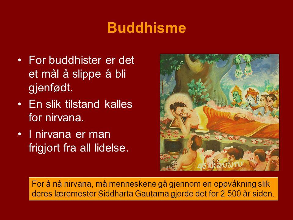 Buddhisme For buddhister er det et mål å slippe å bli gjenfødt. En slik tilstand kalles for nirvana. I nirvana er man frigjort fra all lidelse. For å