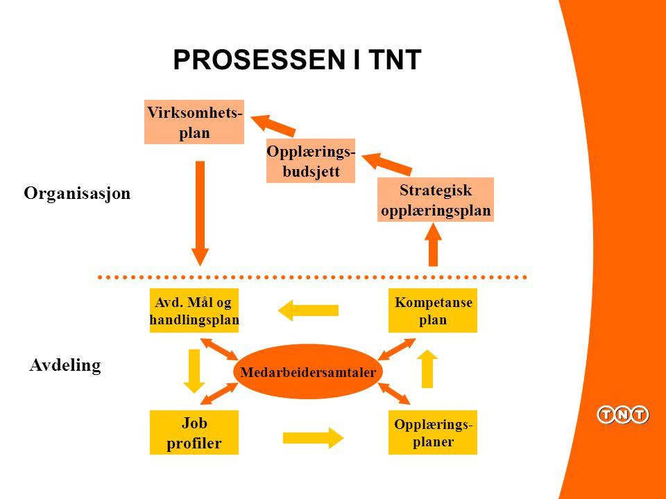 PROSESSEN I TNT Avd.