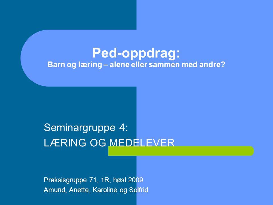 Ped-oppdrag: Barn og læring – alene eller sammen med andre.