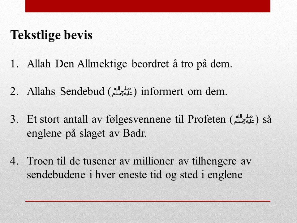 Tekstlige bevis 1.Allah Den Allmektige beordret å tro på dem. 2.Allahs Sendebud ( ﷺ ) informert om dem. 3.Et stort antall av følgesvennene til Profete