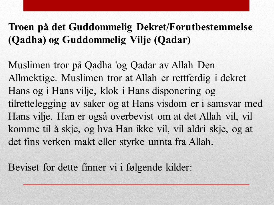 Troen på det Guddommelig Dekret/Forutbestemmelse (Qadha) og Guddommelig Vilje (Qadar) Muslimen tror på Qadha 'og Qadar av Allah Den Allmektige. Muslim