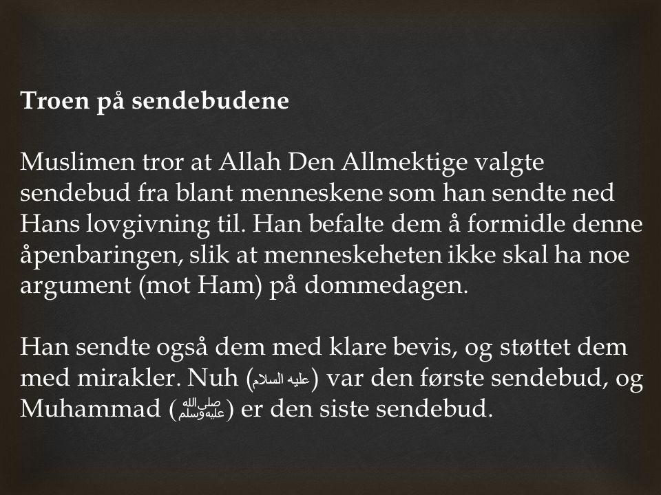 Troen på sendebudene Muslimen tror at Allah Den Allmektige valgte sendebud fra blant menneskene som han sendte ned Hans lovgivning til. Han befalte de