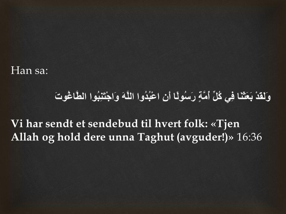 Denne uttalelsen i dagens versjon av Tawrah vitner til profetdommen av vår profet Muhammad ( ﷺ ) og hans sendebudskap.