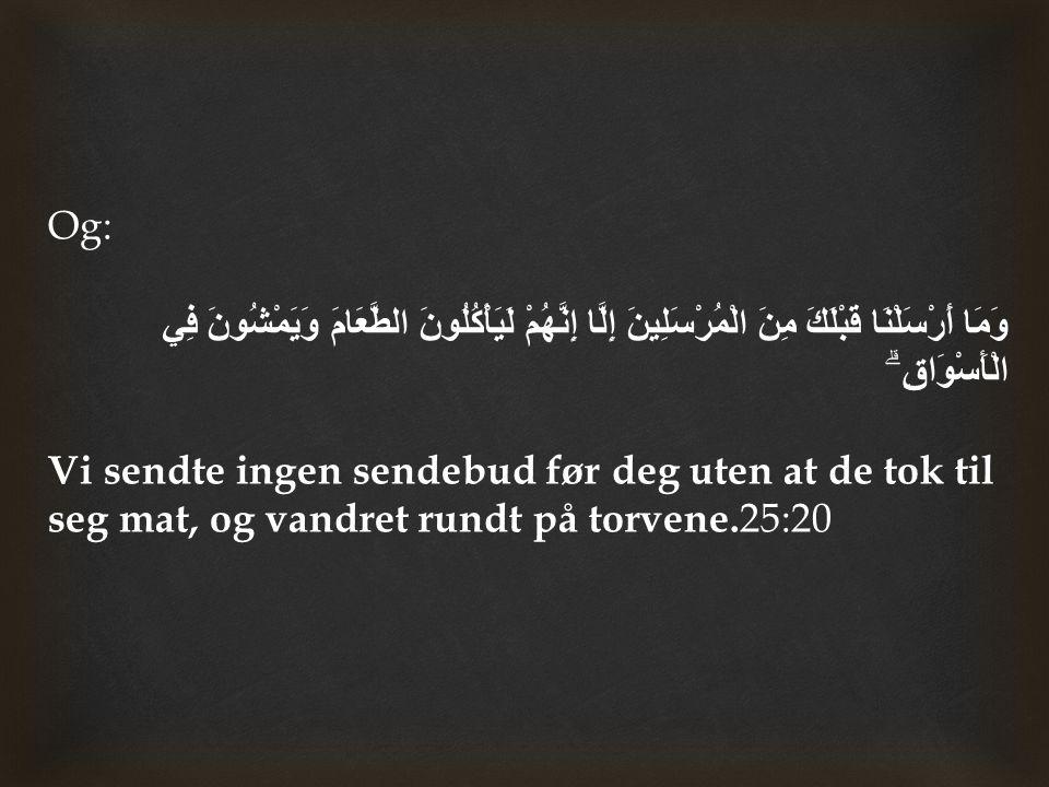 Han ( ﷺ ) sa: Jeg er profeten, og det er ingen løgn.