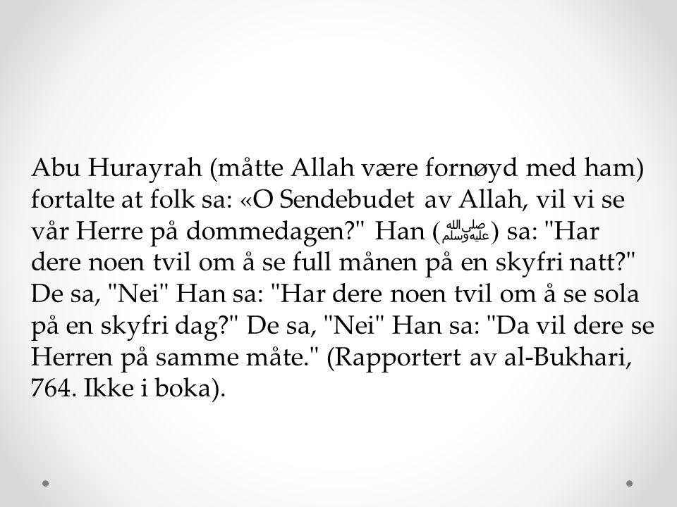 Abu Hurayrah (måtte Allah være fornøyd med ham) fortalte at folk sa: «O Sendebudet av Allah, vil vi se vår Herre på dommedagen?