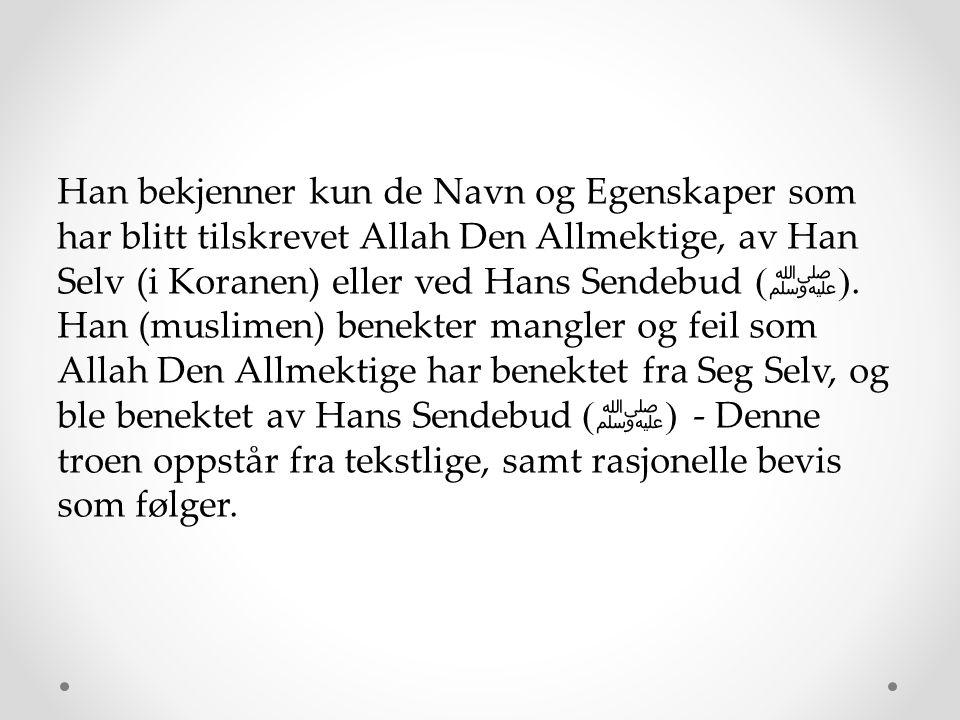 Imam Ahmad, måtte Allah ha barmhjertighet med ham, kommenterte om uttalelsene til Allahs Sendebud ( ﷺ ), f.eks.: Allah Den Allmektige Stiger Ned til den nedre himmelen. På dommens dag Allah Den Allmektige vil bli sett. Allah Undrer. Han Ler og blir Sint. Han er Fornøyd, og Han Elsker og Hater. Han svarte: Vi tror på dem og stoler på dem, uten å si hvordan eller gi dem tolkninger.