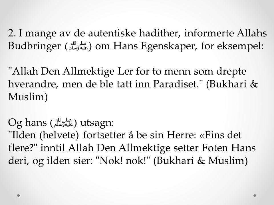 2. I mange av de autentiske hadither, informerte Allahs Budbringer ( ﷺ ) om Hans Egenskaper, for eksempel: