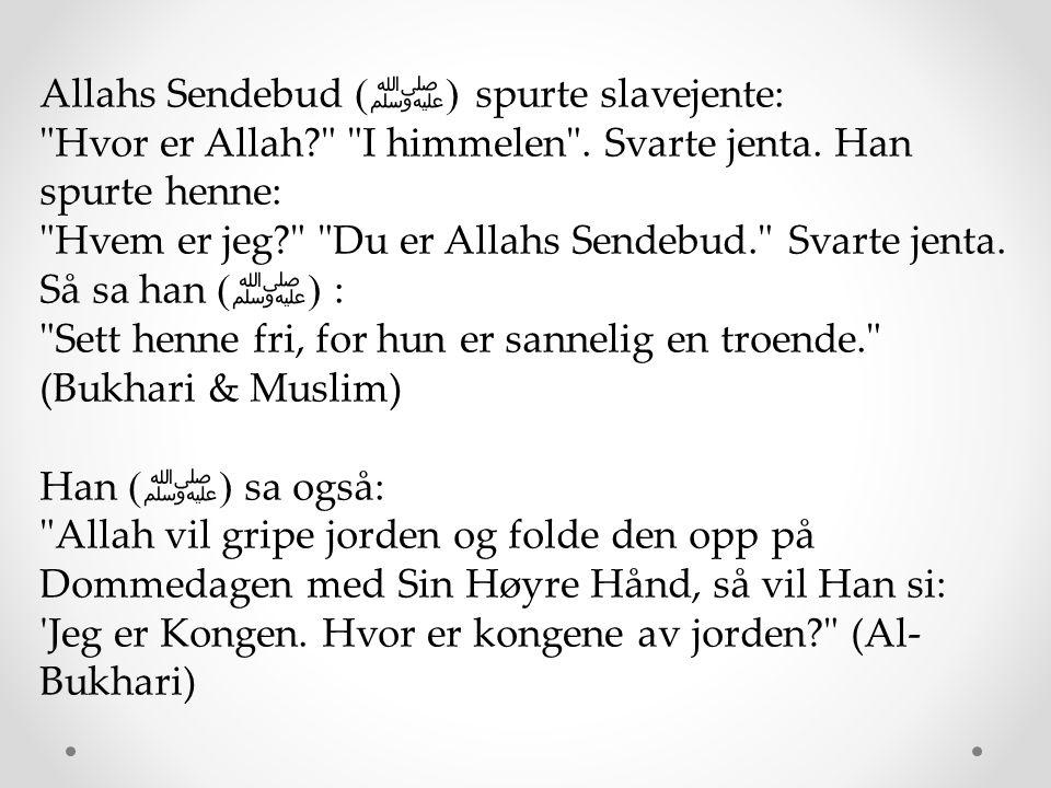 Abu Hurayrah (måtte Allah være fornøyd med ham) fortalte at folk sa: «O Sendebudet av Allah, vil vi se vår Herre på dommedagen? Han ( ﷺ ) sa: Har dere noen tvil om å se full månen på en skyfri natt? De sa, Nei Han sa: Har dere noen tvil om å se sola på en skyfri dag? De sa, Nei Han sa: Da vil dere se Herren på samme måte. (Rapportert av al-Bukhari, 764.