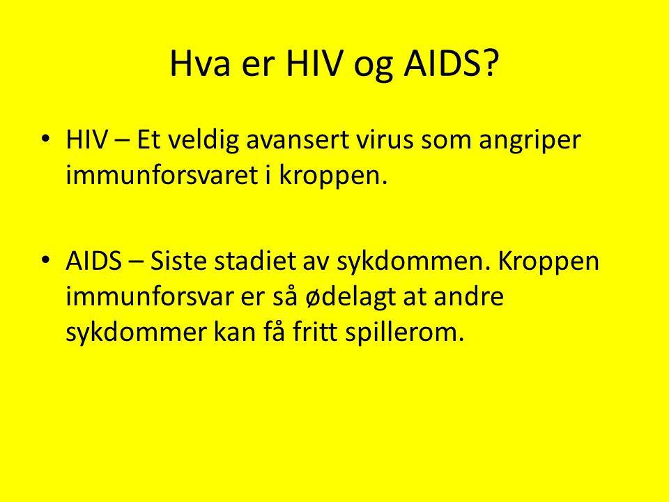 Hva er HIV og AIDS? HIV – Et veldig avansert virus som angriper immunforsvaret i kroppen. AIDS – Siste stadiet av sykdommen. Kroppen immunforsvar er s