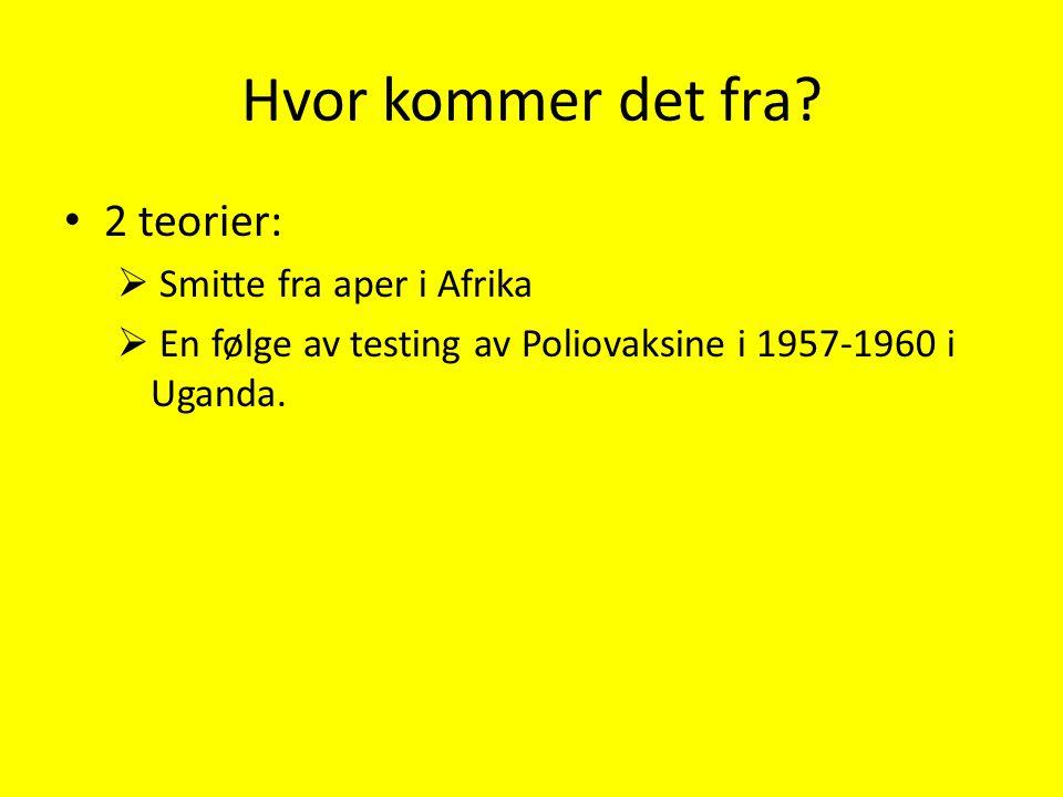 Hvor kommer det fra? 2 teorier:  Smitte fra aper i Afrika  En følge av testing av Poliovaksine i 1957-1960 i Uganda.
